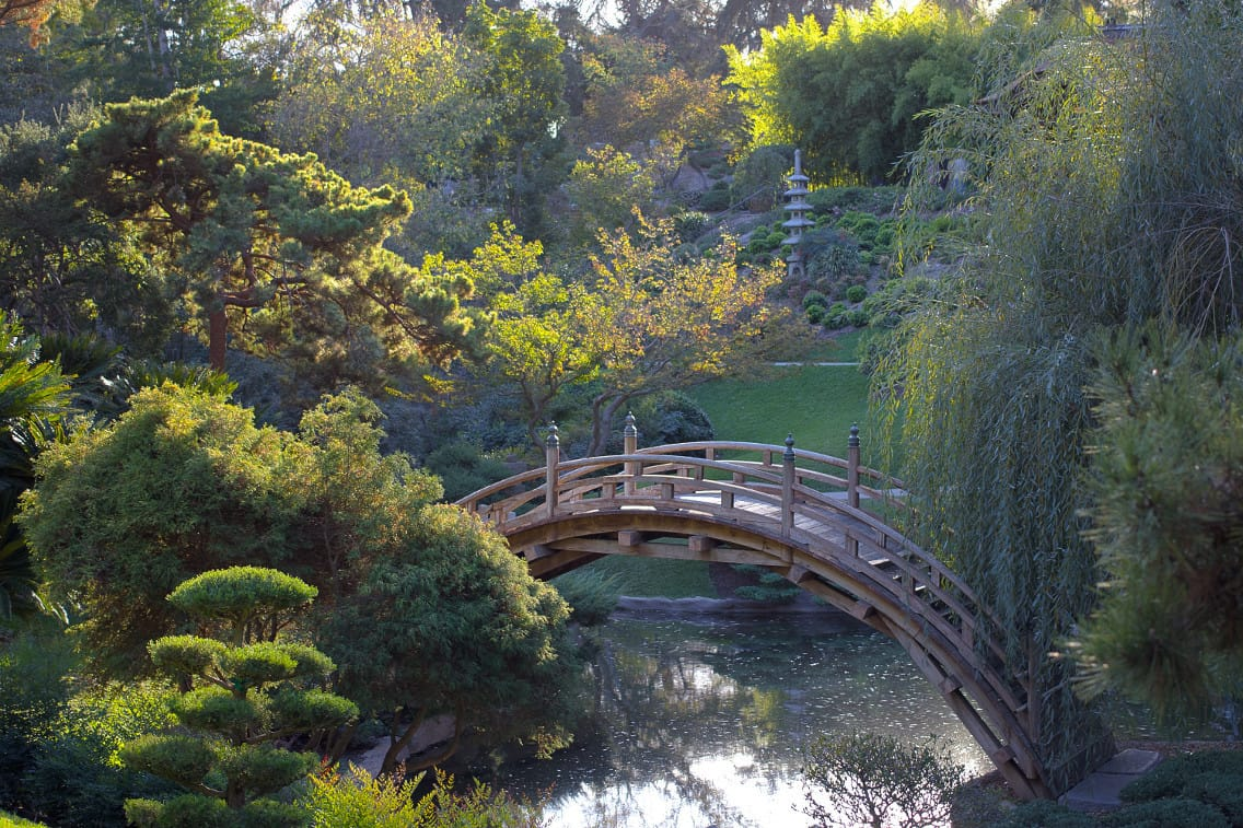 Huntington Library - Japanese garden